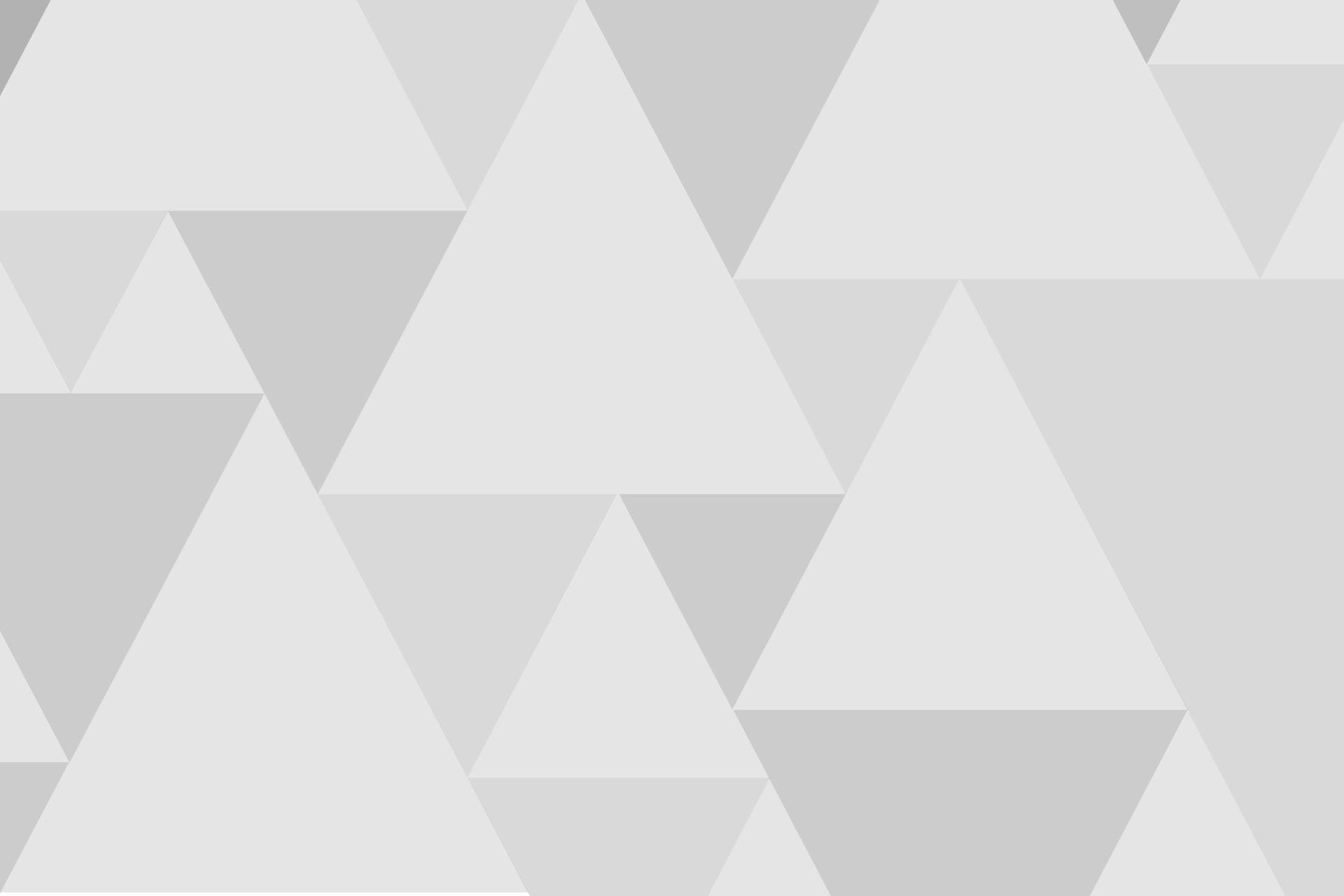 VODGASTEN 67 – LEVE DE KONING